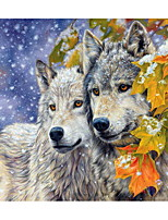 cheap -Animals Oil Painting By Numbers For Adults Paints By Number Canvas Painting Kits 50x40cm DIY Gift Home Decor