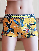 cheap -Men's Print Boxers Underwear - Normal Low Waist Black Red Yellow M L XL