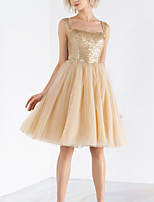 cheap -A-Line Flirty Sparkle Homecoming Cocktail Party Dress Scoop Neck Sleeveless Knee Length Tulle Sequined with Pleats Sequin 2020