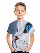 cheap -Kids Boys' Basic Cat Animal Print Short Sleeve Tee Blue
