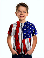 cheap -Kids Boys' Basic Flag Short Sleeve Tee Blue