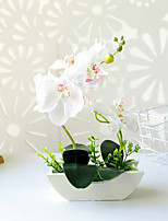 cheap -Boat-shaped Tub Two-pronged Phalaenopsis Bonsai Overall Height 30.5cm, Overall Diameter 20.5cm, Basin Height 6cm, Basin Diameter 17.5cm