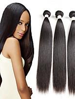 cheap -3 Bundles Hair Weaves Peruvian Hair Straight Human Hair Extensions Remy Human Hair 100% Remy Hair Weave Bundles 300 g Natural Color Hair Weaves / Hair Bulk Human Hair Extensions 8-28 inch Natural
