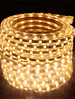 cheap -10M SMD 5050 LED Strip light Waterproof 220V 5050 LED Strip Lights Diode Tape Holiday Decoration Lamp LED String Ribbon 60LEDs/M With EU Plug