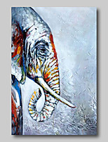 cheap -Oil Painting Hand Painted - Abstract Abstract Landscape Comtemporary Modern Stretched Canvas Animals Elephant