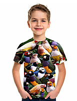 cheap -Kids Boys' Basic Animal Short Sleeve Tee Rainbow