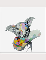 cheap -Art Deco Fun Animals On Canvas Wall Art Modern Happy Dog  oil painting Wall Canvas Home Office Living Room Decoration