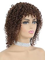 cheap -Remy Human Hair Wig Short Bohemian Curly Pixie Cut Dark Brown New Arrival Capless Brazilian Hair Women's Dark Brown#2 10 inch