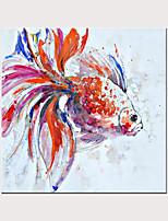 Недорогие -Животный цвет прекрасная золотая рыбка 100% ручная роспись маслом без внутренней рамки ядра стены украшения дома искусства