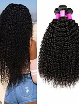 cheap -4 Bundles Hair Weaves Brazilian Hair Kinky Curly Human Hair Extensions Remy Human Hair 100% Remy Hair Weave Bundles 400 g Natural Color Hair Weaves / Hair Bulk Human Hair Extensions 8-28 inch Natural