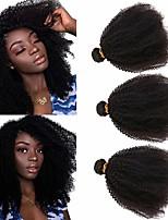 cheap -3 Bundles Hair Weaves Brazilian Hair Afro Curly Human Hair Extensions Remy Human Hair 100% Remy Hair Weave Bundles 300 g Natural Color Hair Weaves / Hair Bulk Human Hair Extensions 8-26 inch Natural