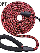 cheap -10 ft rope dog leash with comfortable padded handle, strong dog leash for medium and large dogs walking training hiking