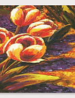 cheap -IARTS Hand Painted tulips Oil Painting with Stretched Frame For Home Decoration With Stretched Frame
