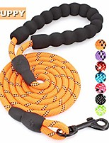 cheap -strong dog leash with comfortable padded handle and highly reflective threads dog leashes for small and medium dogs