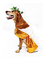 cheap -toga dog costume (large)