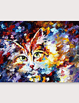 cheap -IARTS Hand Painted Little cat Oil Painting with Stretched Frame For Home Decoration With Stretched Frame