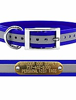 cheap -wide reflective d ring dog collar strap with custom brass name plate reflective dark blue