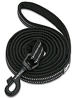 cheap -best reflective dog leash .outdoor adventure and trainning pet leash.for medium to large dogs