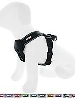 cheap -pet training soft adjustable reflective padded puppy / dog harness medium / large black