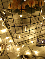cheap -Wedding Party Decoration Light String 1m