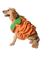 cheap -Dog Halloween Costumes Costume Shirt / T-Shirt Pumpkin Unique Design Cute Christmas Party Dog Clothes Warm Yellow Costume Plush S M L