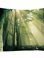 cheap -Forest Sunshine Trail Digital Printing Tapestry Classic Theme Wall Decor 100% Polyester Contemporary Wall Art Wall Tapestries Decoration