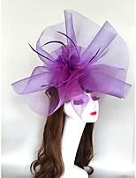 cheap -Headpieces Feathers / Net Fascinators / Hats / Headpiece with Feather / Cap / Flower 1 Piece Wedding / Horse Race Headpiece