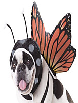 cheap -california costumes butterfly dog costumes, pet, multi, small
