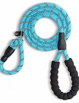 cheap -5 ft reinforce dog leash,comfortable padded handle pet leash for small medium large dogs heavy duty dog leashes (blue)