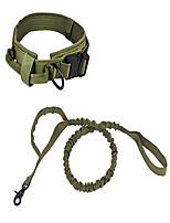 cheap -tactical dog collar nylon elastic military improved dog safety & comfort leash with metal buckle for daily and training