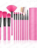 cheap -shiratori makeup brush set with holder 12pcs makeup brushes premium synthetic foundation brush blending face powder blush concealers eyeshadow make up brushes kit - rose red