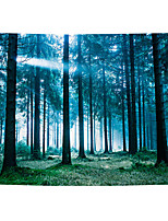 cheap -Wall Tapestry Art Decor Blanket Curtain Picnic Tablecloth Hanging Home Bedroom Living Room Dorm Decoration Polyester Sun Forest Views