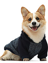 cheap -Dog Cat Coat Hoodie Color Block Casual / Sporty Fashion Casual / Daily Winter Dog Clothes Puppy Clothes Dog Outfits Breathable Blue Costume for Girl and Boy Dog Cotton XS S M L XL XXL