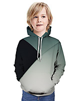 cheap -Kids Boys' Active Basic Color Block 3D Graphic Print Long Sleeve Hoodie & Sweatshirt Red