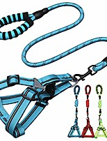 cheap -dog leash harness set comfortable padded handle and night safety reflective dog training leash and adjustable dog harness (light blue)