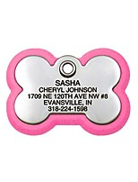 cheap -pet id tag, bone frame tag, rugged dog tags with colorful frame, custom engraved, large, neon pink & stainless
