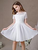 cheap -A-Line Jewel Neck Knee Length Chiffon / Lace Junior Bridesmaid Dress with Pleats