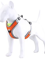 cheap -Dog Cat Harness Portable Solid Colored Polyester Labrador Alaskan Malamute Golden Retriever Dalmatian Beagle Bulldog Orange Champagne 1pc