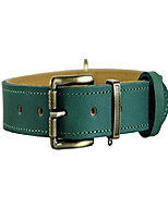 cheap -italy full-grain leather padded dog collar, teal, large