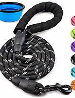 cheap -dog leash 5 ft thick durable nylon rope - comfortable padded handle - highly reflective threads - dog leashes for medium and large dogs with collapsible pet bowl(1 pack)