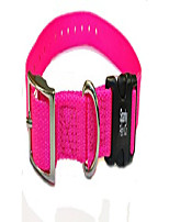 "cheap -3/4"" nylon quick snap e collar double buckle replacement strap- all e collar systems (neon pink)"