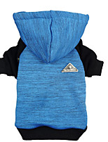 cheap -Dog Cat Hoodie Jacket Color Block Casual / Sporty Fashion Casual / Daily Dog Clothes Puppy Clothes Dog Outfits Breathable Blue Costume for Girl and Boy Dog Cotton XS S M L XL XXL