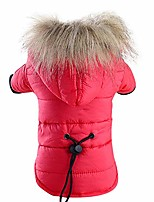 cheap -2019!!puppy winter clothe hoodie coats,pet dog warm down cotton-padded jacket costume (m, red)