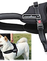 cheap -dog body harness padded extra big large medium small heavy duty vary from all kinds of size (m)