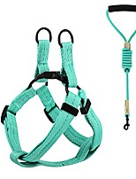 cheap -dog leash harness set, durable adjustable heavy duty no pulling dog harness + leash for pet dog training walking running, small size, lake blue