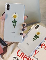 cheap -Case For Apple iPhone 11 / iPhone 11 Pro / iPhone 11 Pro Max Pattern Back Cover Transparent / Flower TPU
