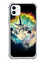 cheap -Cat Case For Apple iPhone 12 iPhone 11 iPhone 12 Pro Max Unique Design Protective Case Shockproof Back Cover TPU