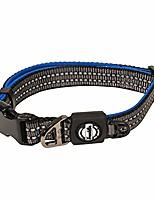 cheap -nylon dog collar – reflective – franklin pet supply co – comfort fit – neoprene – adjustable blue