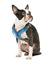 cheap -- trekking harness, small dog fleece lined harness with memory foam padding, blue, x-small