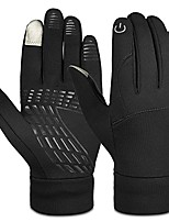 cheap -vbiger winter warm gloves touch screen gloves driving gloves cycling gloves for men women (small, black)